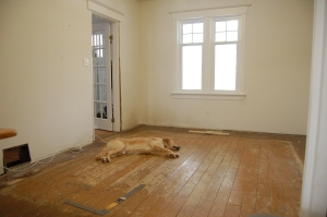 Living Room - even the dog is tired of these floors.