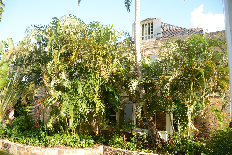 Georgian era building in Nelson's Dockyard, Antigua